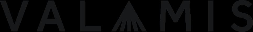 valamis-logo-black-rgb-large (3)